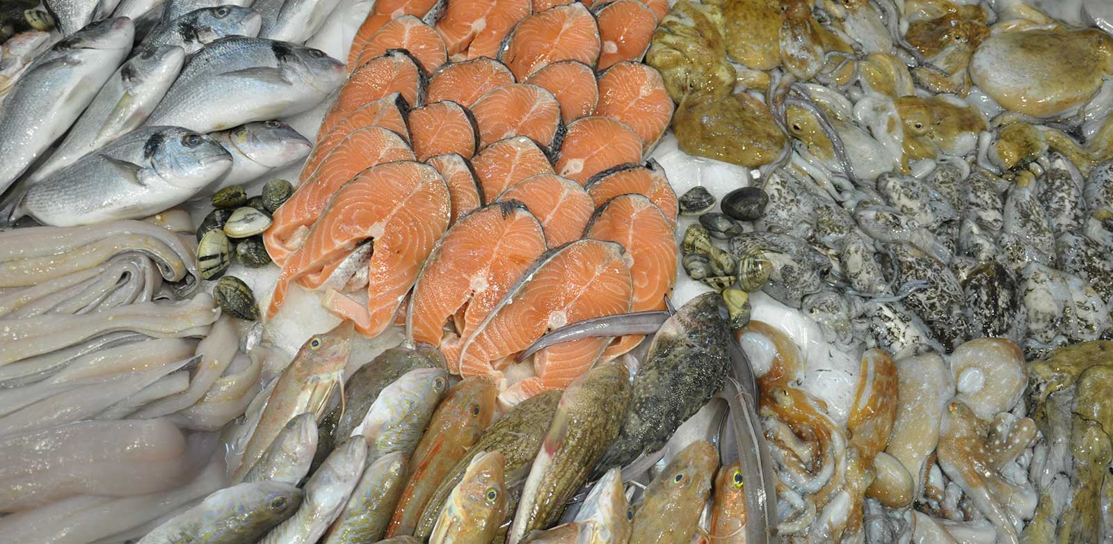 pescheria licata pesce fresco